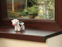 Window cill (& small cow)
